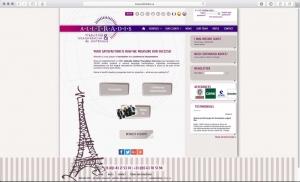 Webdesign d'une agence de traduction