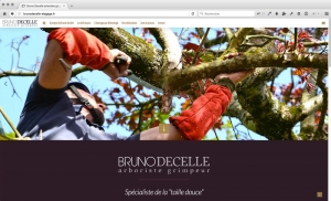 Création du site internet d'un arboriste grimpeur